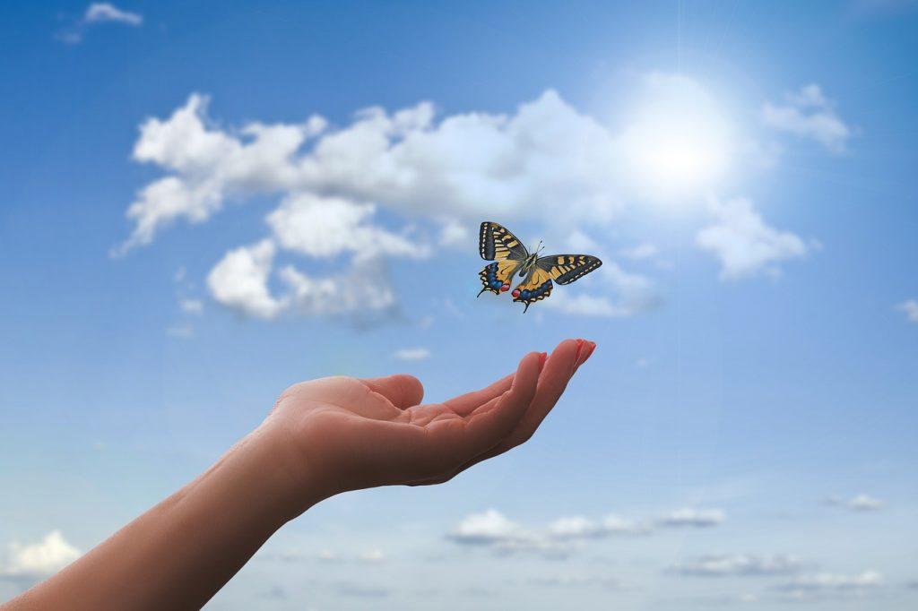 Hand_mit_Schmetterling